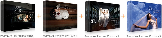 bundles portrait+3volumes1 Portrait Lighting + Portrait Recipes